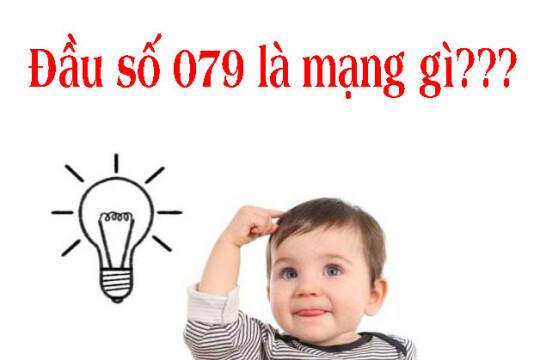 079 là mạng gì? Hướng dẫn mua SIM 079 mang ý nghĩa may mắn