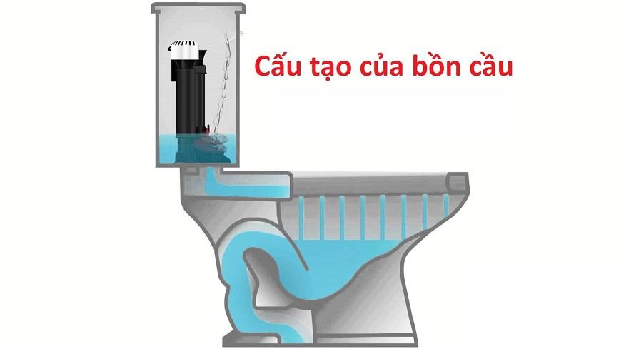 bon-cau-co-cau-tao-nhu-the-nao