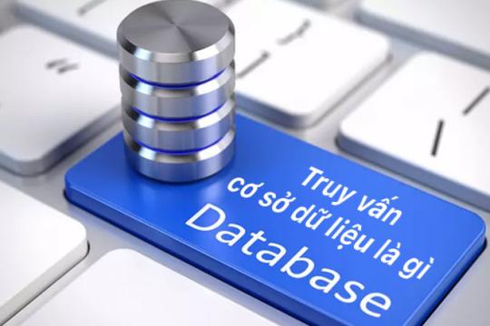 Truy vấn cơ sở dữ liệu là gì? Xây dựng cơ sở dữ liệu sao cho đúng?