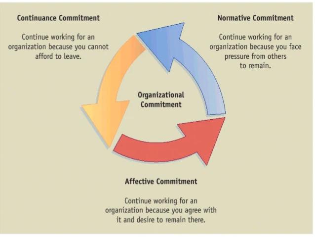 Các yếu tố liên quan đến cam kết tổ chức