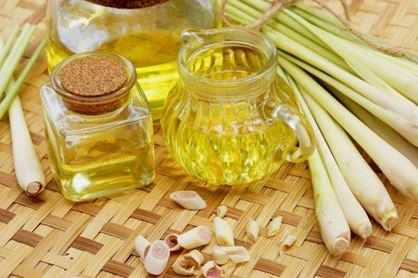 Cách làm tinh dầu sả nguyên chất