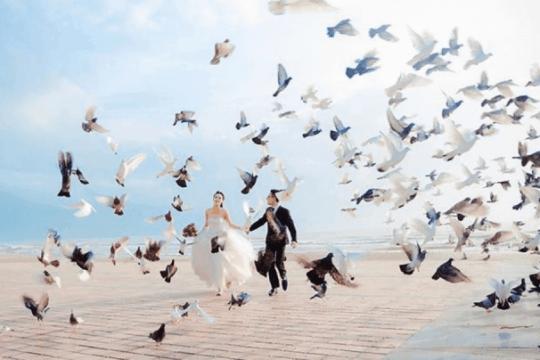 Review top 5 những địa điểm chụp ảnh ở Đà Nẵng lãng mạn nhất