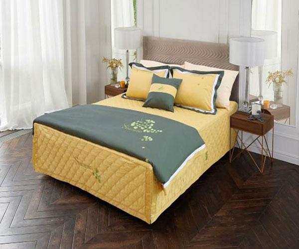 Ga giường Sông Hồng Urban