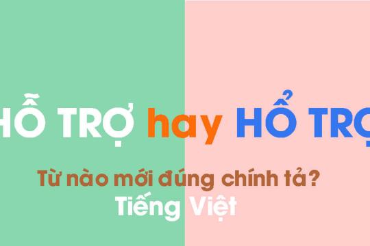 Hổ trợ hay hỗ trợ? Từ nào mới đúng chính tả Tiếng Việt