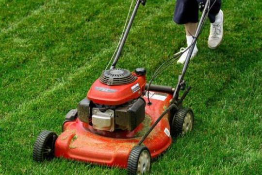 Review Top 5 sản phẩm máy phát cỏ sắc bén, dễ sử dụng