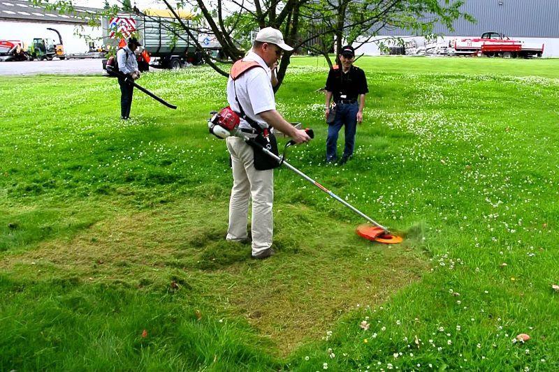 Máy cắt cỏ 2-2