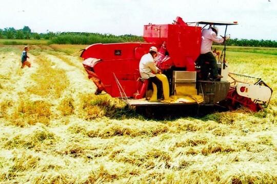 Review top 5 máy cắt lúa không thể thiếu cho nhà nông