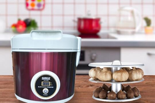 Review Top 5 máy làm tỏi đen cho các chị em nội trợ khỏi lo kỳ công khi vào bếp