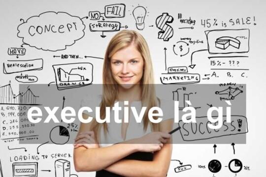 Executive là gì? Một số ngành nghề liên quan đến executive