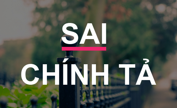 Nguyen-nhan-sai-chinh-ta-x-s