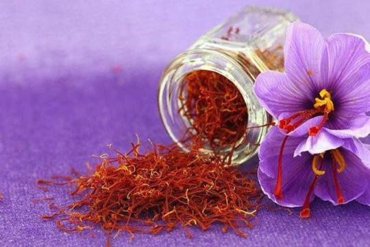 Review top 5 thương hiệu cung cấp nhụy hoa nghệ tây chất lượng nhất