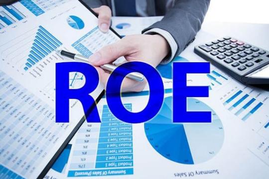 Chỉ số Roe là gì trong kinh doanh? Chỉ số Roe bao nhiêu là tốt nhất?
