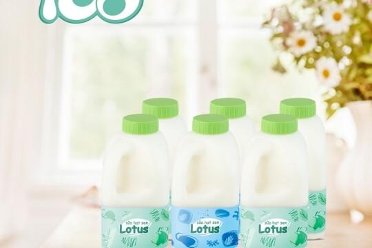Review top 5 dòng sản phẩm sữa hạt sen chứa nhiều chất dinh dưỡng