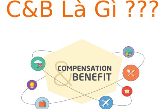 C&B là gì? Những yêu cầu cần thiết ở công việc C&B có thể bạn chưa biết