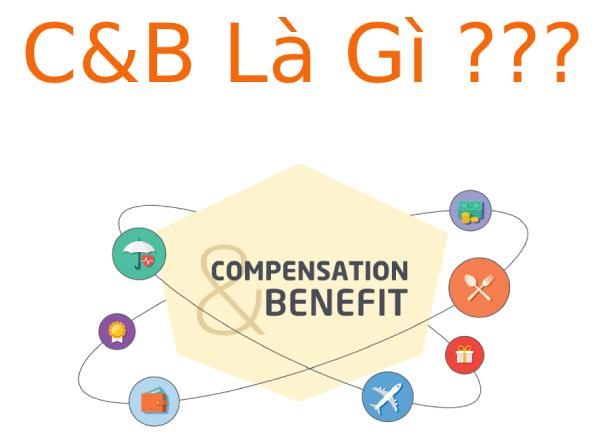 Tìm hiểu C&B là gì