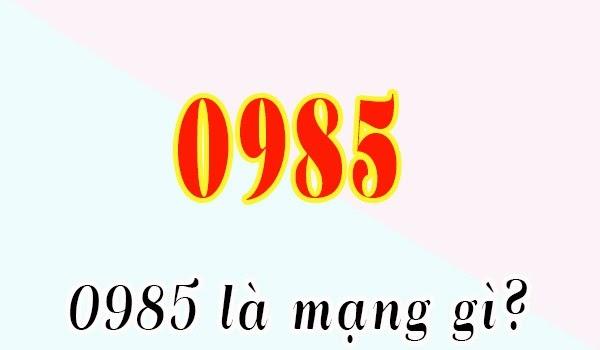Tim-hieu-dau-so-0985-la-mang-gi