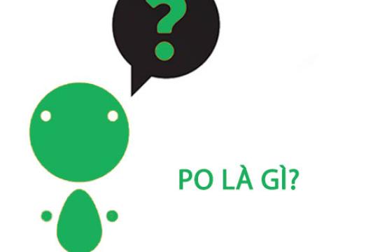 Những thồng tin về PO là gì? Hướng dẫn cách tạo po cho doanh nghiệp