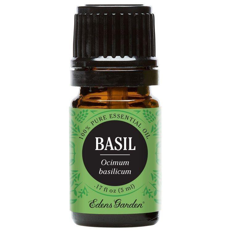 Tinh dầu thơm húng quế Basil Edens Garden