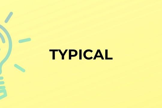 Typical là gì? Các từ gần nghĩa với typical trong tiếng Việt
